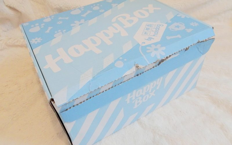 HappyBox Holidog